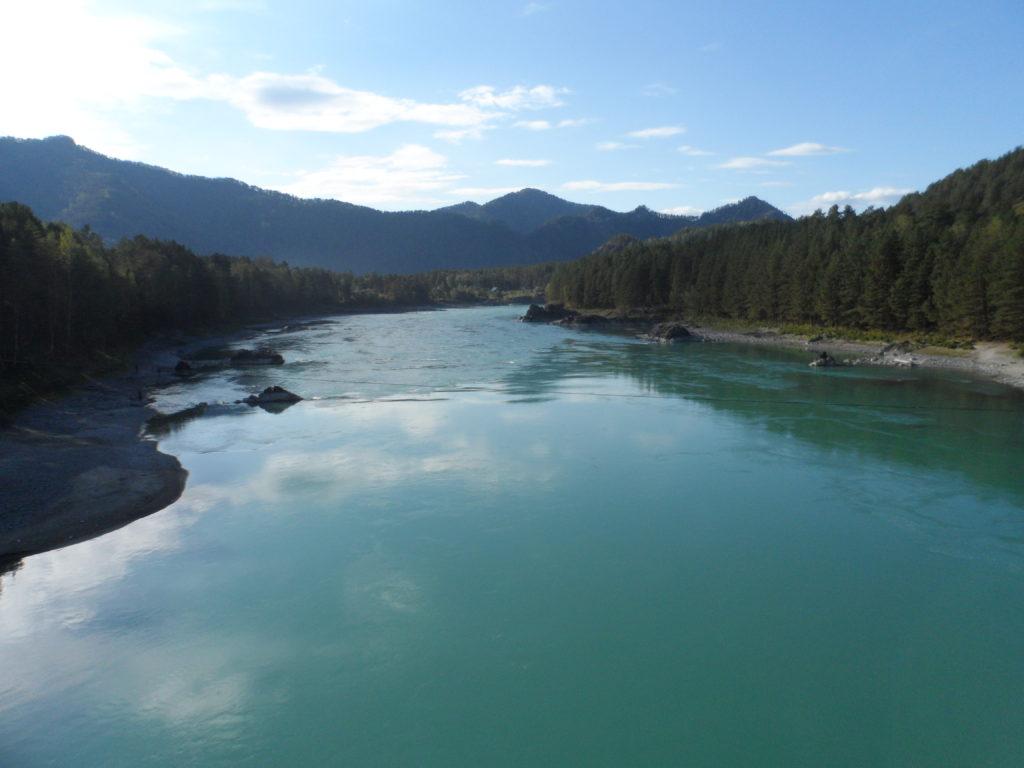 Окрестности Аската. Виды с моста через реку Катунь.