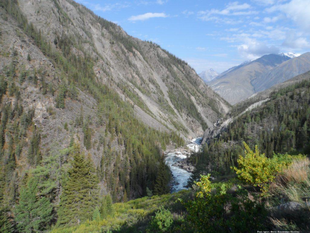 Река Аргут на Алтае.