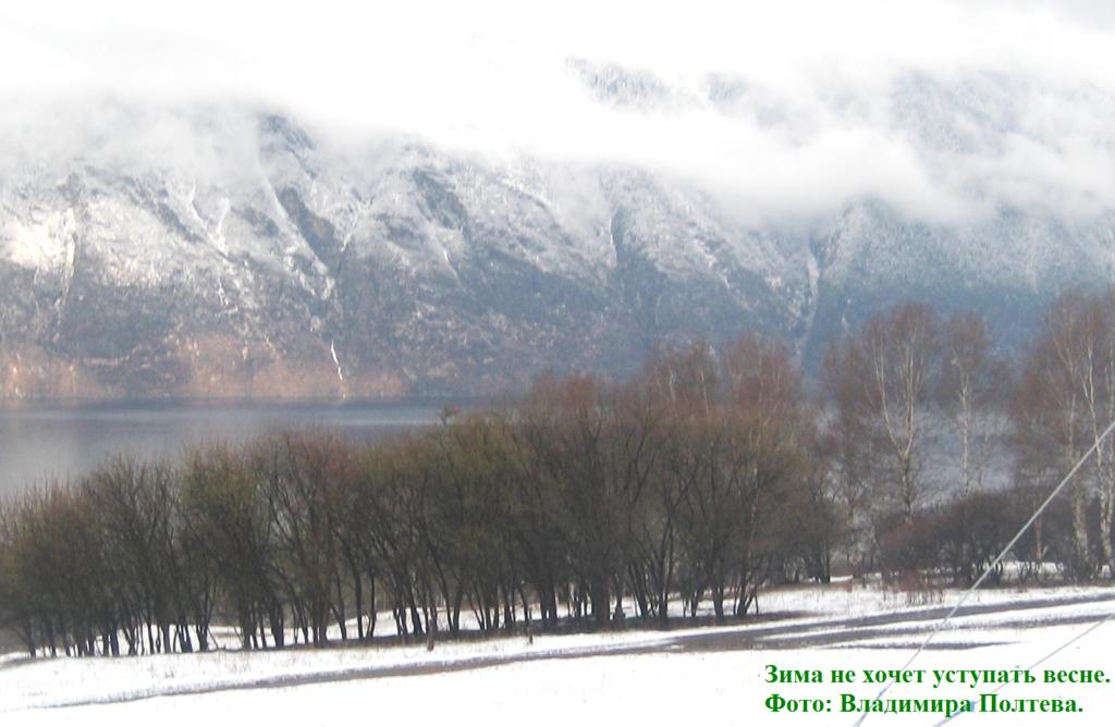 Алтай. Телецкое озеро. Зима не хочет уступать весне.