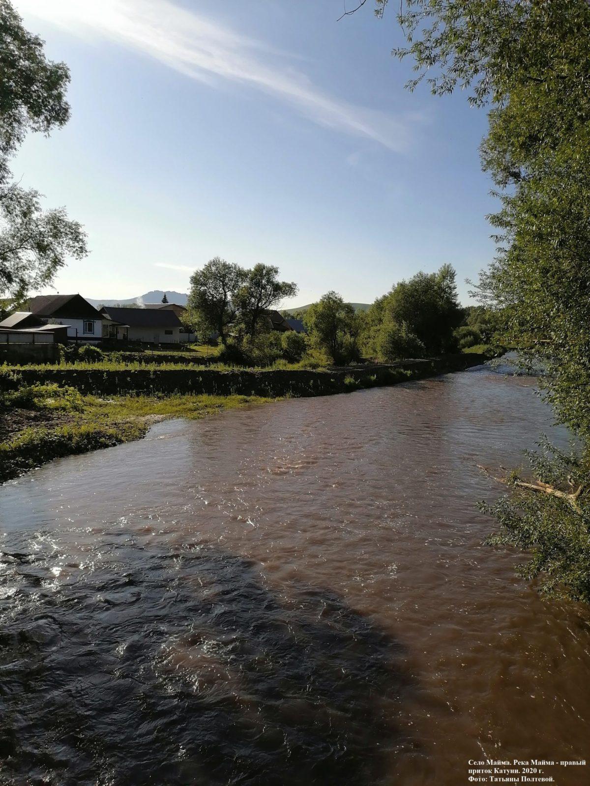 Село Майма. Река Майма - правый приток Катуни. 2020 г.