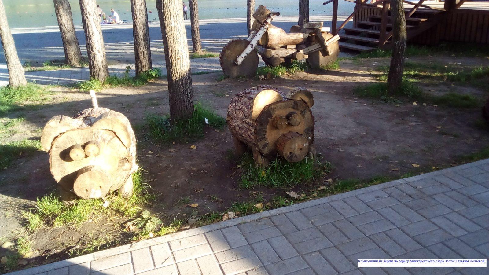 Композиции из дерева на берегу Манжерокского озера.