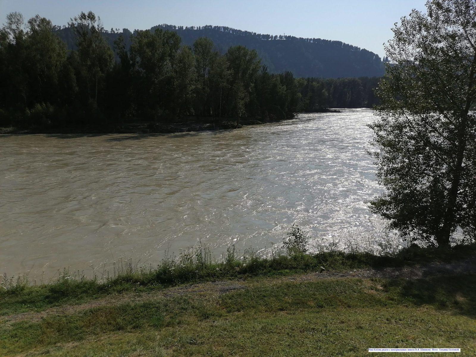 Река Катунь рядом с мемориальным знаком В.Я. Шишкову.