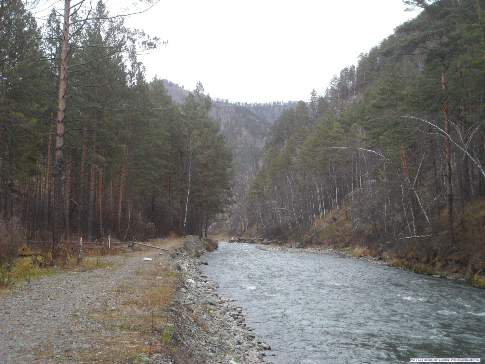 Река Сема в окрестностях с. Камлак.
