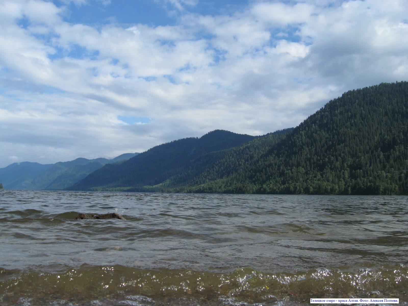 Телецкое озеро - краса Алтая.