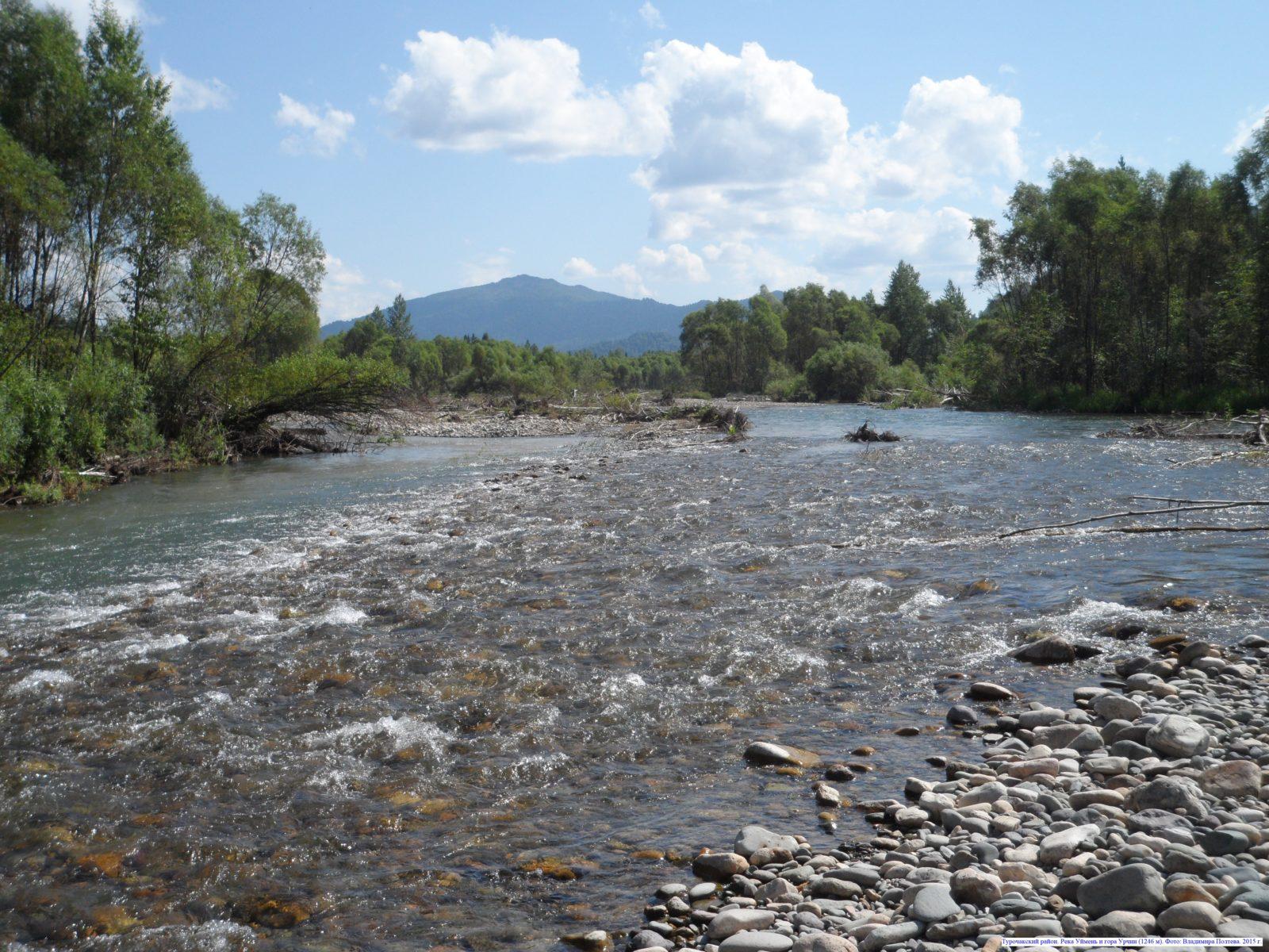 Турочакский район. Река Уймень и гора Урчин (1246 м).