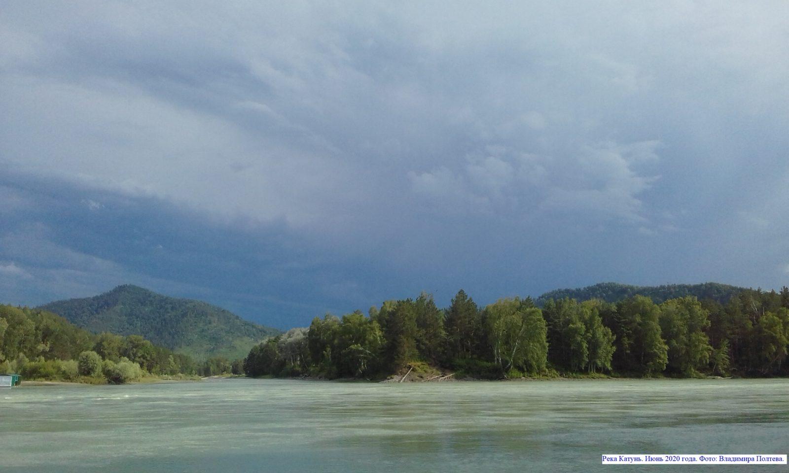Река Катунь. Июнь 2020 года.