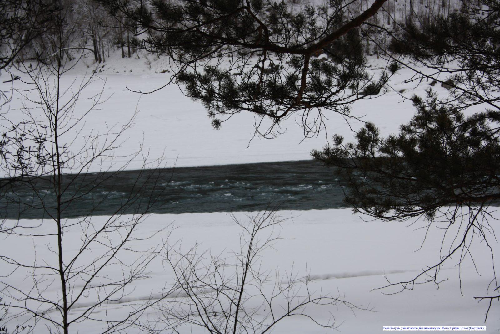 Река Катунь: уже повеяло дыханием весны.