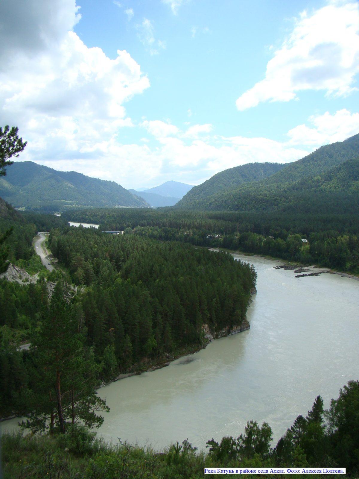 Река Катунь в районе села Аскат.