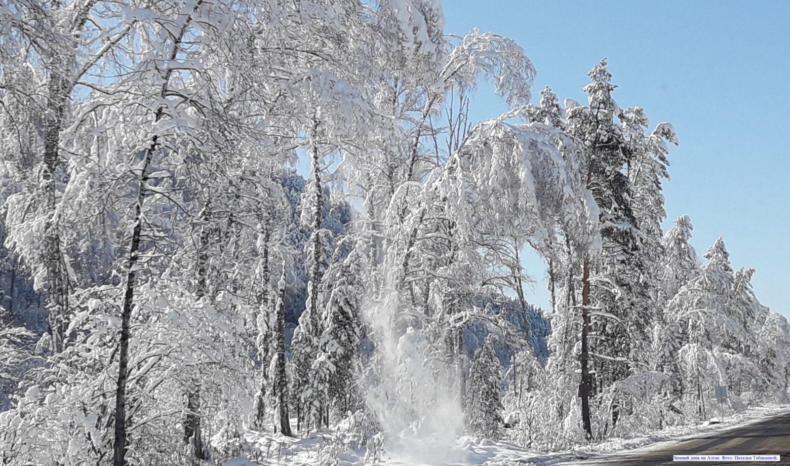 Зимний день на Алтае.
