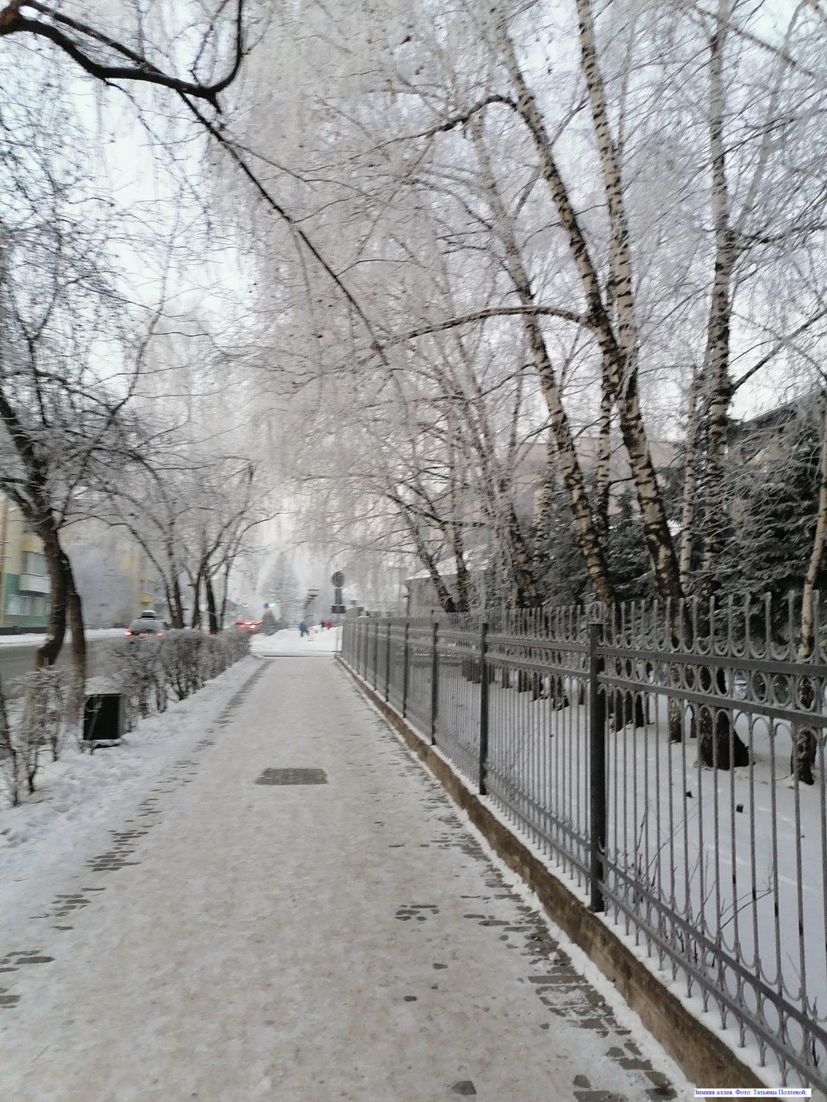 Зимняя аллея.