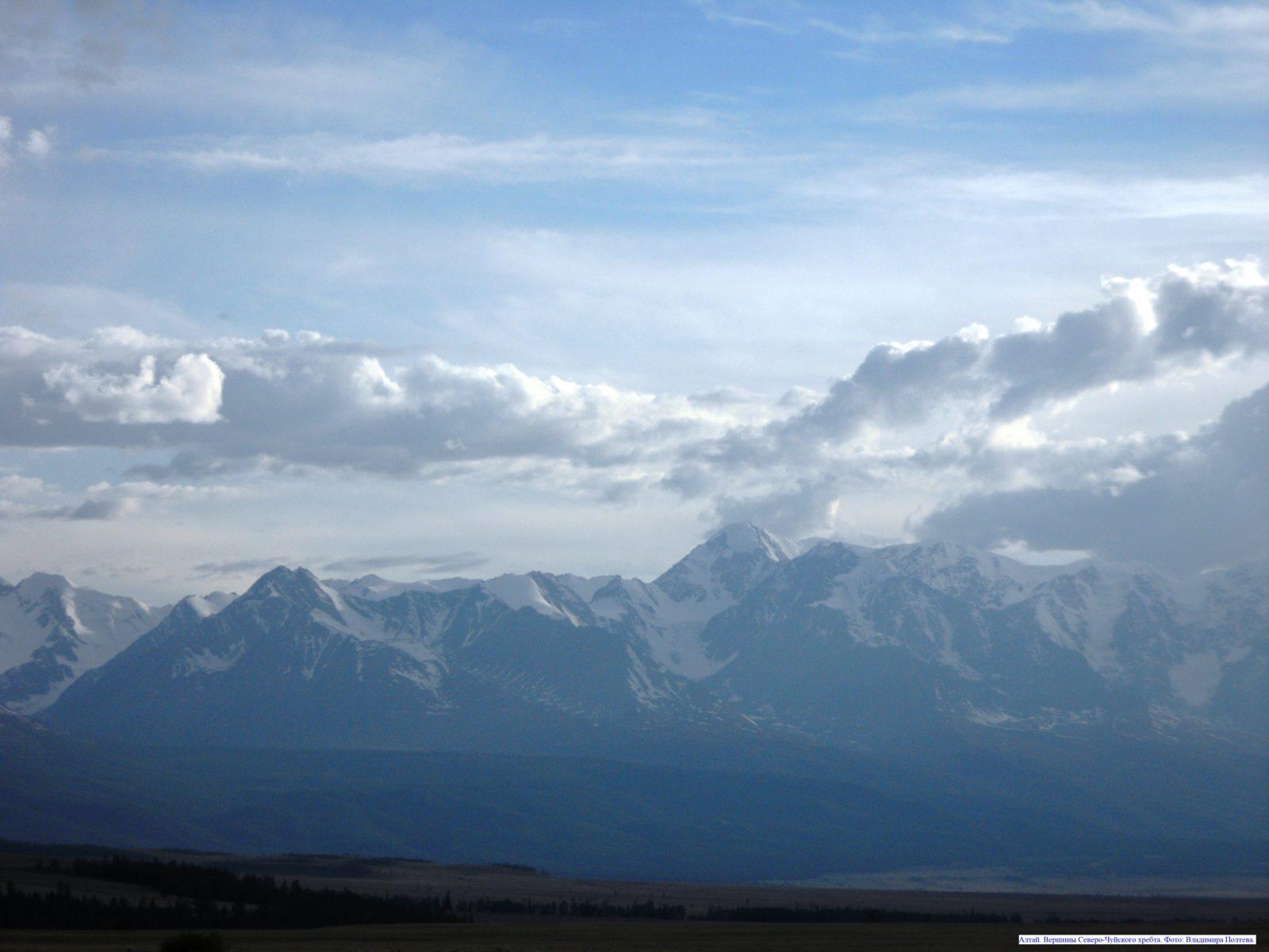 Алтай. Вершины Северо-Чуйского хребта.