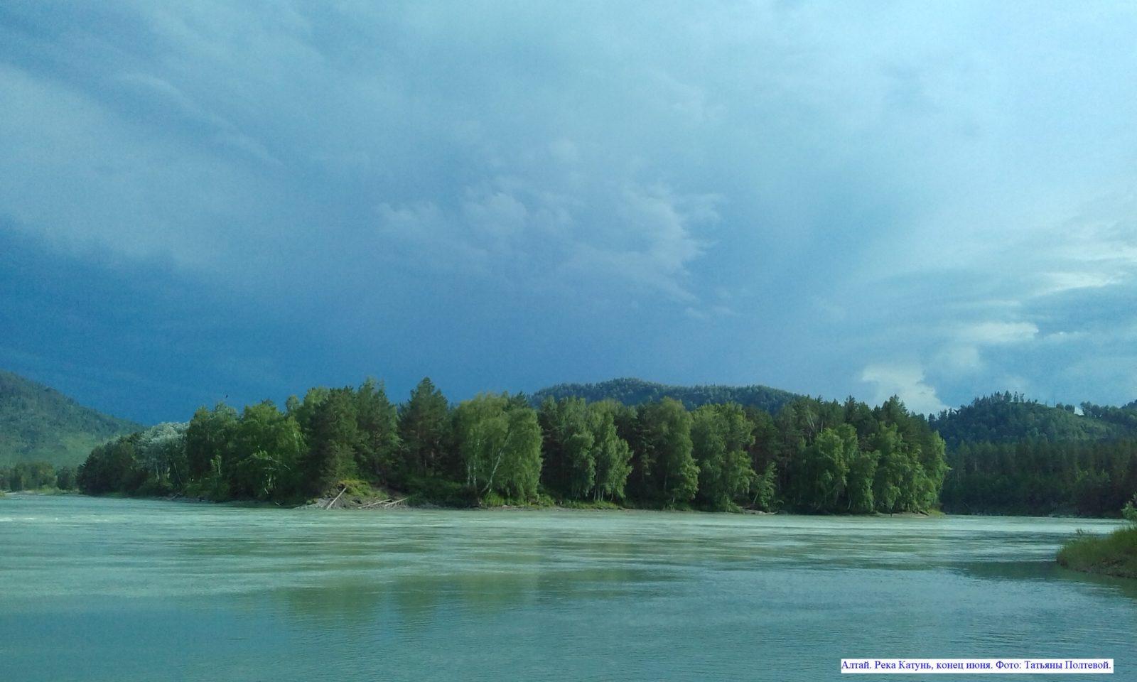 Алтай. Река Катунь, конец июня.
